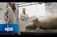Kannst Du ein Tier töten? (2/2) | DIE REPORTAGE | NDR Doku