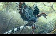 Der Traum vom Fliegen Wie haben Tiere die Luft erobert Doku Teil 2