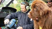 360° Geo Reportage – Die Rettungshunde vom Gardasee
