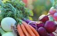 #43: Wenn gesunde Ernährung zum Zwang wird mit Dr. Friederike Barthels