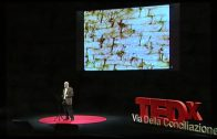 The Shroud and the jew: Barrie Schwortz at TEDx ViadellaConciliazione