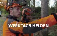 Wir sind der Wald – Arbeitsplatz Forst | Werktags Helden | SWR Doku