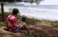 Tiere im Fokus E12: Die Buckelwale von Polynesien Doku