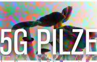 5G Pilze (cubensis) – Erfahrungsbericht