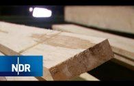 Holzverarbeitung: Vom Baum zum Brett | Wie geht das? | NDR