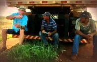 Agrarindustrie und ihre Alternativen    Ganzer Doku Film   HD Doku 2015