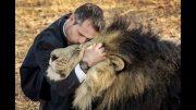 Als Teil des Löwenrudels – Kevin Richardson [Ger]