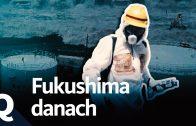 Fukushima – Ende nicht in Sicht (Ganze Doku)   Quarks