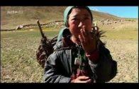 ARTE Doku: Himalaya im Dorf der Frauen 360° Reportage