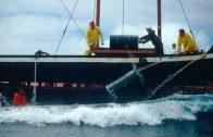 Atom-Müll-Entlager Atlantischer Ozean
