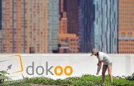 Auf den Dächern der Stadt –  New York   Doku