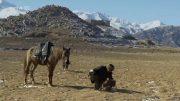 Auf der Seidenstraße (2) Auf Skiern durch den Altai
