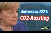 Aufwachen #221: Danke Merkel, Fluchtbekämpfung, Elektroautos, Trump & Phoenix-Doku