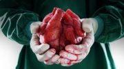 Ausgeschlachtet – Organe auf Bestellung (DOKU 2016 HD)