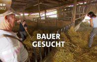 Bauer gesucht – Wer übernimmt den Kunkelhof   SWR Doku