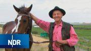 Bauernhof: Herbstverkauf auf dem Pferdehof | Hofgeschichten | NDR Doku