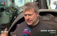 Bayer und Monsanto  die Saat der Gier   WDR Doku