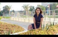 BBC Documentary – Abu Dhabi, UAE BBC horizon 2017