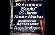 Bei meiner Seele – 20 Jahre Xavier Naidoo [Kommentar zur VOX-Doku]