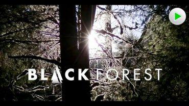 Black Forest – Der Schwarzwald – Natur Doku – Dokumentation deutsch Dorothenhütte, Wutachschlucht