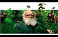 Charles Darwin die Wissenschaft gegen Religion (Doku Hörspiel)