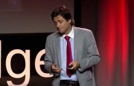 Consciousness is a mathematical pattern: Max Tegmark at TEDxCambridge 2014