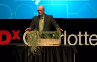 Cows, Carbon and Climate | Joel Salatin | TEDxCharlottesville