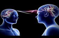 Das menschliche Gehirn   die Grenzen des menschlichen Geistes Doku Hörspiel