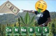✨  Der Cannabis-König – Millionär mit Drogen DOKU 2018 (Doku 2018)