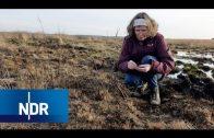 Der große Moorbrand von Meppen: Wie hat sich die Natur verändert? | NaturNah | NDR Doku
