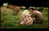 🐆 Der Löwenmann   Kevin Richardson Dokumentation