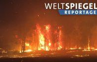 Australien im Feuer – Klima- oder Naturkatastrophe? Weltspiegel-Reportage