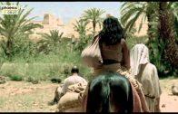 Die alten Ägypter, Teil I und Teil II (phoenix, 28.07.2015)