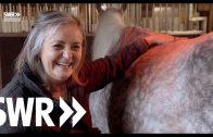 Die Fohlenmutter – Nachtwache bei den Araberpferden | SWR Mensch Leute