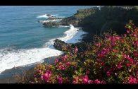 Die Kanarischen Inseln 3 Teneriffa, El Hierro und La Palma