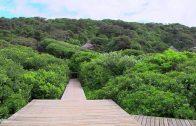 Die neuen Paradiese: Südafrika – Im Regenbogenland   (Arte)