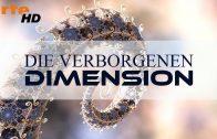 Die verborgenen Dimension (Arte – Dokumentation)