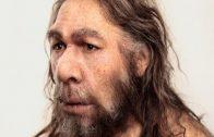 (Doku 2017!) Die Anfänge der Menschheit (3/3) Homo sapiens, der letzte seiner Art HD