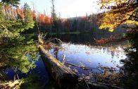 (Doku in HD) Die letzten Paradiese – Mecklenburg-Vorpommerns Nationalparks