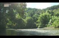 Doku Natur Full HD 1080p