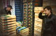 Früchte der Nacht   Doku vom Treiben auf dem Großmarkt