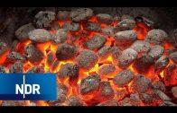 Grillkohle: Vom Baum zur Holzkohle  | Wie geht das? | Reportage | NDR