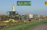 Großeinsatz Maishäckseln / 20 Fahrzeuge -Biogasanlage Biggest farmer corn harvest Maisernte LU Blunk