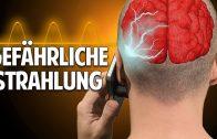 Handy & WLAN – wie krank machen sie uns wirklich? – Prof. Dr. Dr. med. Enrico Edinger