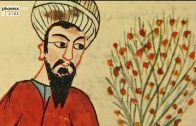Im Bann der Grünen Götter (2/2) Die Ärzte der Kalifen