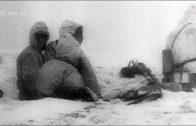 Im Kessel Trauma Stalingrad (2/2) Die Kapitulation (Doku in HD)