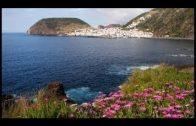 Inselerlebnis Azoren wilde Schönheit am Ende Europas ard Reisen Doku