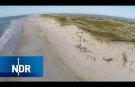 Inselgeschichten von Amrum | die nordstory | NDR