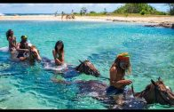 Jamaika – Die wilde Schöne der Karibik [Natur & Kultur Doku]