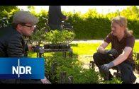 Gärtnern mit Profi-Hilfe | NaturNah | NDR
